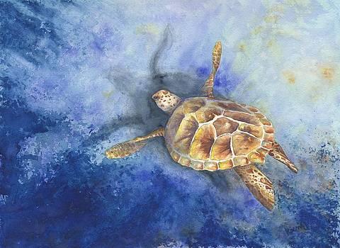 Sea Turtle by Oty Kocsis