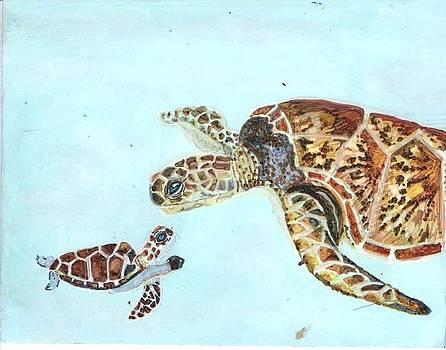 Sea Turtles by Lin Deahl