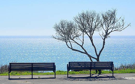 Sea View by AJ  Schibig