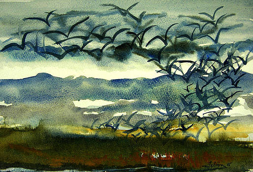 Seabirds rising from the marsh 2-27-15  by Julianne Felton