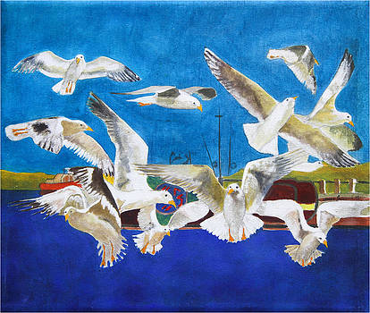 Marko Jezernik - Seagulls