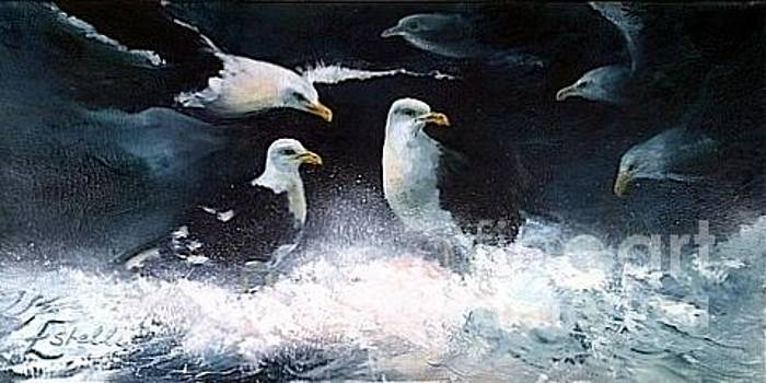 Seagulls meeting place... by Estelle Hartley