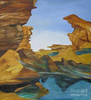 Seal Cove by Richard Dotson