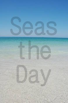 Seas the Day by May Photography