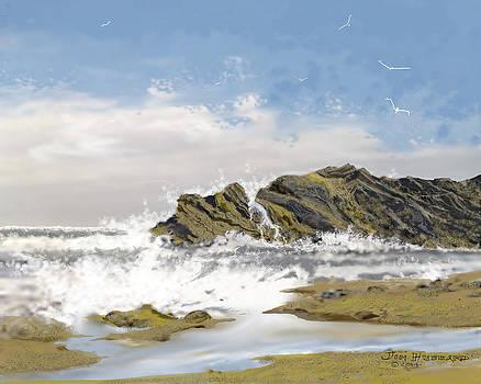 Seascape 20 by Jim Hubbard