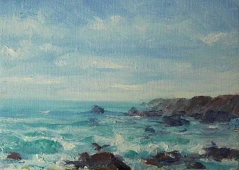 Seascape at Point Arena by Lynn T Bright