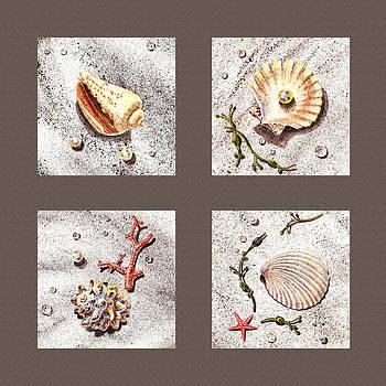 Irina Sztukowski - Seashell Collection III