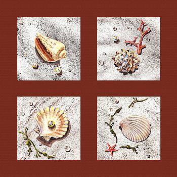 Irina Sztukowski - Seashell Collection IV