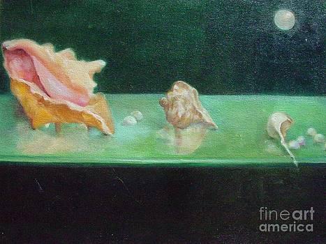 Seashells on Glass by Kathleen Hoekstra