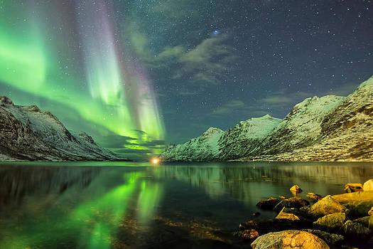 Heavenly by Mark Ledingham