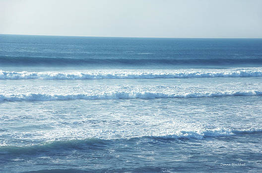 Donna Blackhall - Seaside Blue