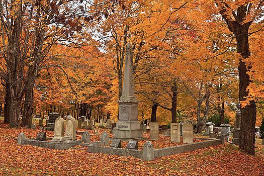 Seaside Cemetery Deer Isle Maine by David Smith
