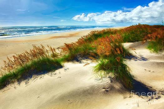 Seaside Serenity II - Outer Banks by Dan Carmichael