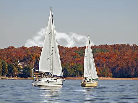 Seasonal Sailing by Susan Leggett