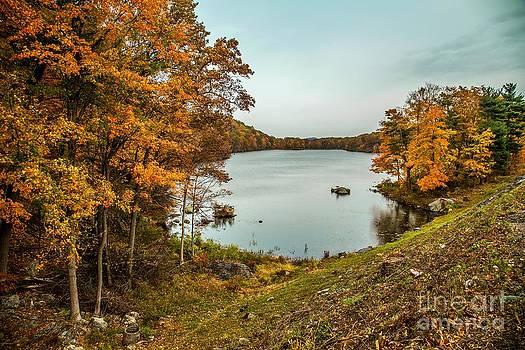 Seasons Change by Daniel Portalatin Photography