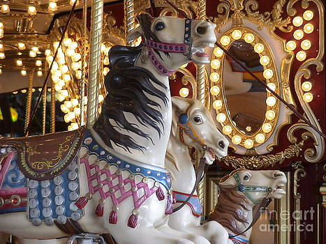 Seattle Carousel by Laura  Wong-Rose