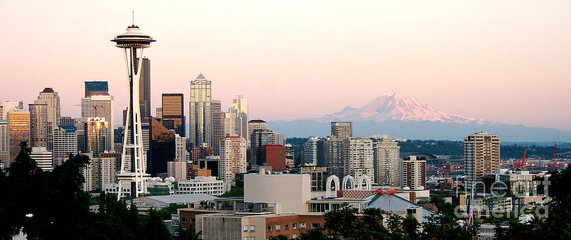 Seattle Cityscape by Denise Lilly