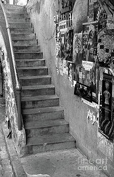 Seattle Stairs by Cindi Ressler