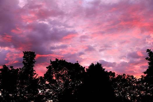 Seattle Sunset by Charlene Reinauer