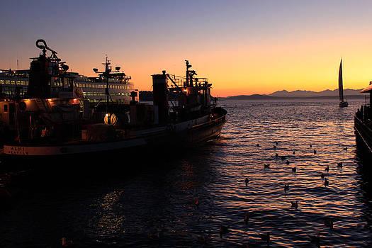 John Daly - Seattle Sunset
