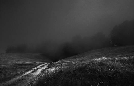 Daniel Furon - Lost Path - Fog Runs the Hills of Sonoma Coast - K