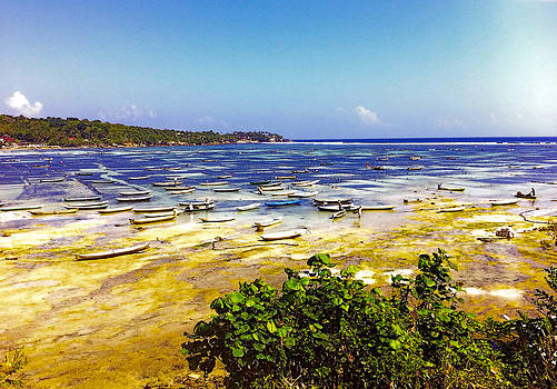 Seaweed farming Bali by Jo Ann