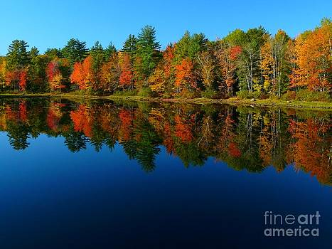 Christine Stack - Sebago Lake Autumn Reflection