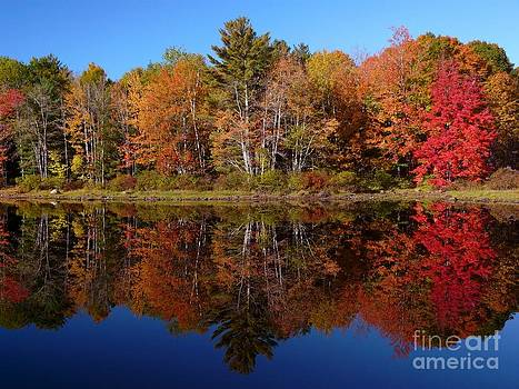 Christine Stack - Sebago Lake Autumn Reflection II