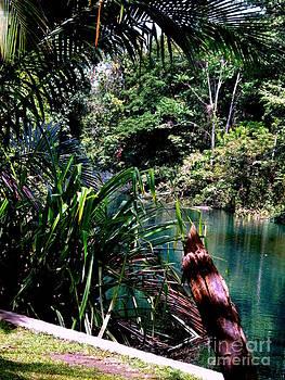 Jason Sentuf - Sebra River 2