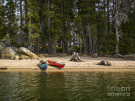Secluded Beach Camp by Cheryl Wood