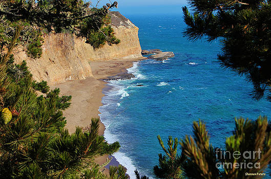 Secluded Beach by Shannan Peters