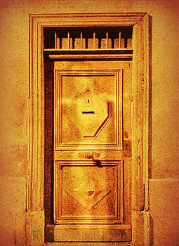 Secret Door by Li   van Saathoff