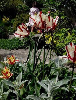 Secret Garden by Ethel Rossi