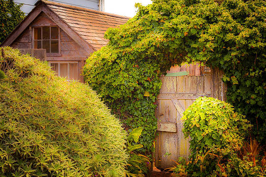 Secret Garden Gate by Michael Fahey