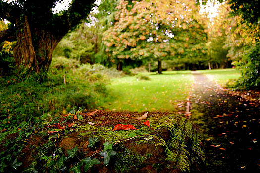 HweeYen Ong - Secret Garden