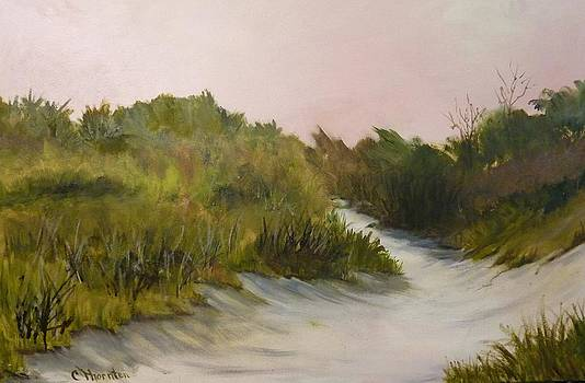 Secret Places by Carol Thornton