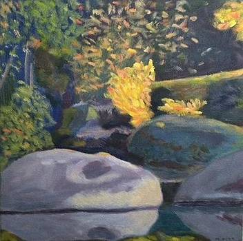 Secret Spot  Autumn Yuba by Molly Fisk