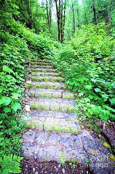 Nick Gustafson - Secret Staircase
