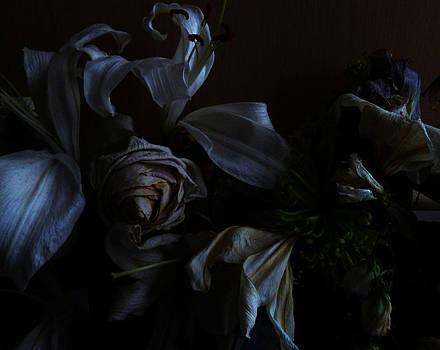Baato   - secrets of the dark