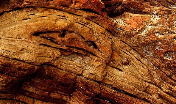 Randal Bruck - Sediment