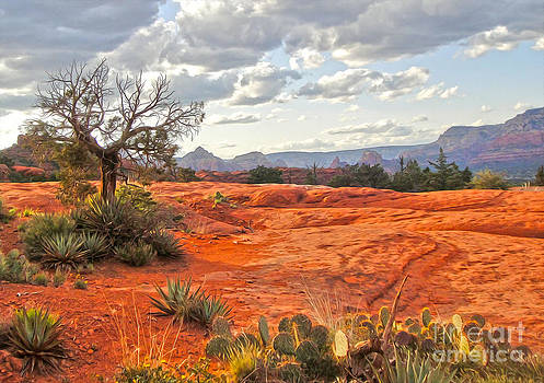 Gregory Dyer - Sedona Arizona Dead Tree - 04