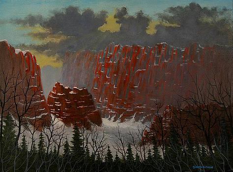 Sedona Canyon by Steven  L Parris