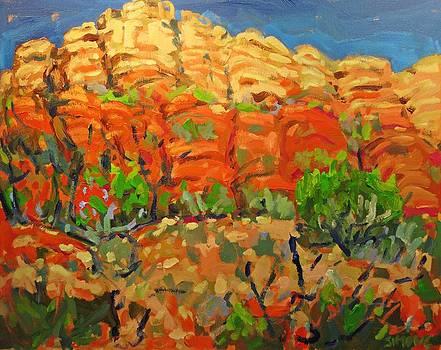 Sedona Desert by Brian Simons