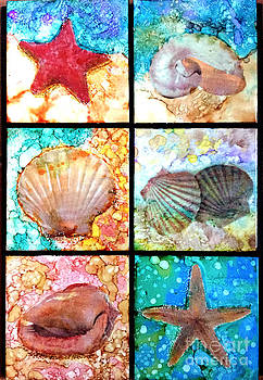 See Shells by Alene Sirott-Cope
