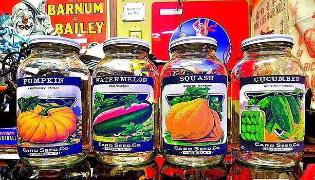 Seed Jars Two by Patricia Greer