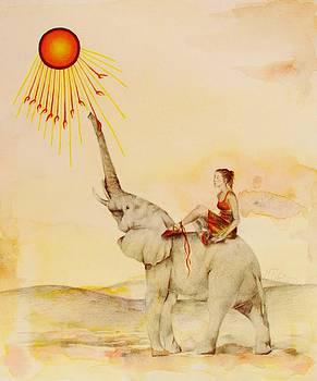 Seeking the Higher Light by Marlene Tays Wellard