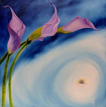 Seeking The Light by Carol Avants