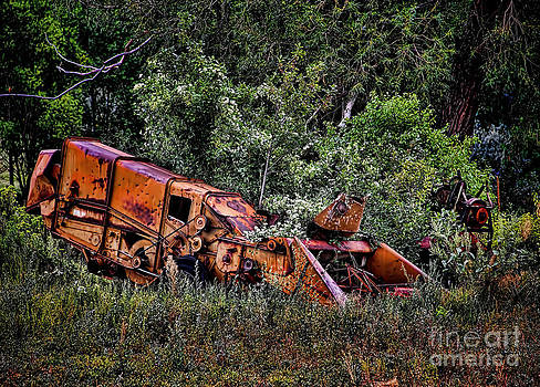 Jon Burch Photography - Seen better days