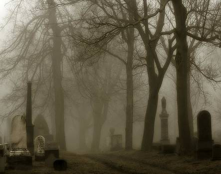 Gothicrow Images - A Graveyard Seeped In Fog