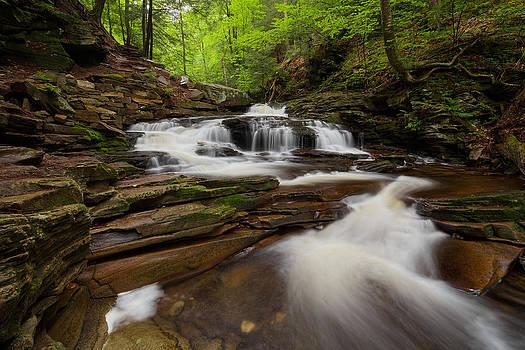 Seneca Falls by Tim Devine